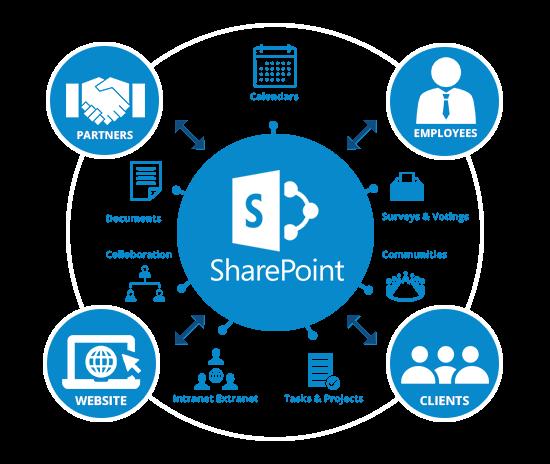 Microsoft Software Office 365 Dresdner ProSoft